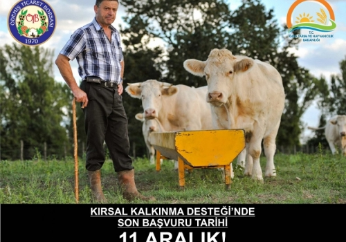 """KIRSAL KALKINMA DESTEĞİ""""NDE SON BAŞVURU TARİHİ 11 ARALIK!"""