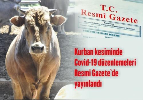 Kurban kesiminde Covid-19 düzenlemeleri Resmi Gazete`de yayınlandı.